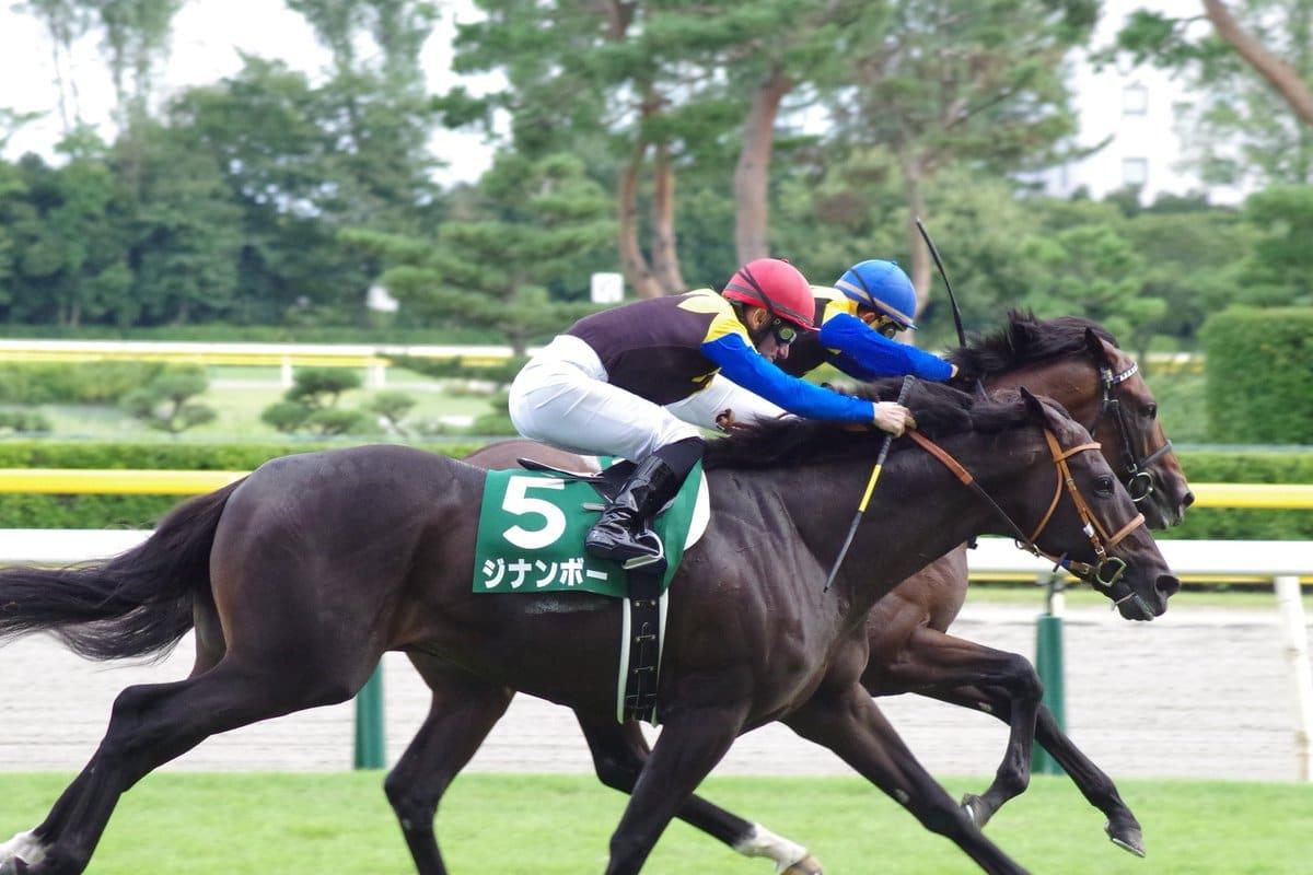 馬連 競馬 初心者 競馬初心者必見!まずは馬単と馬連の違い・特性を知るべき!